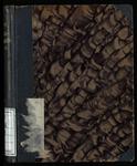 Taschen-Worterbuch der rhaetoromanischen Sprache in Graubunden. Besonders der Oberlander und Engadiner Dialekte