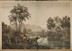 Jdeale Landschaft aus der aelteren (oligocaenen) Tertiaerzeit