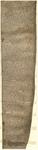 1200 dicembre 7 (data della publicatio)