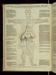 [2]: Venæ cauæ iecorariæ, koiles, hanabub descriptio, qua sanguis omnium partium nutrimentum per uniuersum corpus diffunditur.