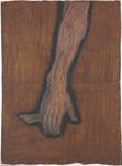 Rete venosa superficiale del dorso della mano e vene della superficie volare dell'avambraccio