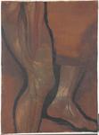 Arto inferiore. Coscia, ginocchio e parte superiore della gamba destra dalla superficie antero-mediale