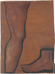 Arto inferiore destro, superficie antero-mediale
