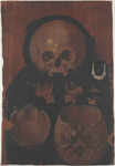 Cranio e faccia osservati dalla superficie anteriore; base calotta ed ossa della faccia e del collo