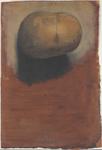 Calotta cranica dalla superficie esterna