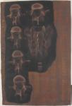 Vertebre della parte caudale della colonna vertebrale