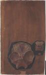 Parte della superificie interna della base del cranio