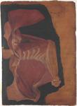Muscoli della parete anteriore del torace