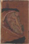Organi della cavità peritoneale