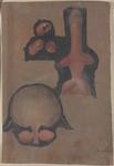 Organi dell'apparato urinario e genitale maschile
