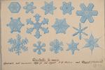 Cristalli di neve osservati nell'inverno 1870-71 dal Signor A. W. Waters nel Davos (Svizzera)