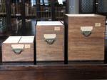 Serie I, II, III dell'Iconoteca dei botanici