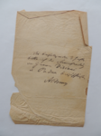 Lettera da Braun a Visiani