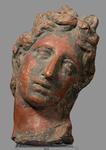 Scultura - Testa di Apollo