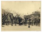 """Piazza Capitaniato prima della costruzione del nuovo palazzo di Lettere il """"Liviano"""""""