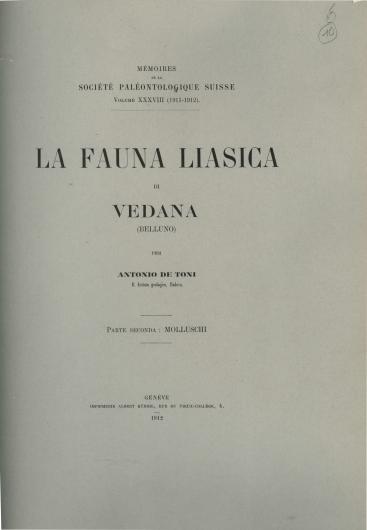 La fauna liasica di Vedana (Belluno). Pt. 2, Molluschi