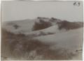 Alberoni. 1910