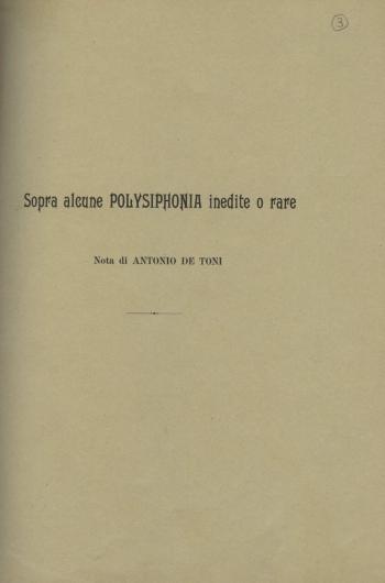 Sopra alcune Polysiphonia inedite e rare