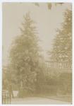 Orto botanico di Padova nel 189?