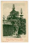 Ricordo dell'Orto botanico di Padova. la bignonia di Goethe