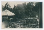 Orto botanico di Padova, 1924