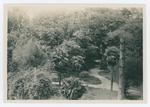 Orto botanico di Padova, 192?