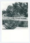 Veduta dell'Orto botanico di Padova