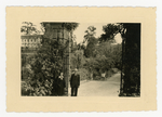 Orto botanico di Padova, 1943. Del Neri, Giuseppe Gola