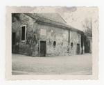 Orto botanico di Padova, 1942