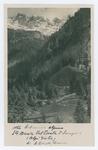 Orto botanico alpino di S. Maria Val Trenta d'Isonzo - recto