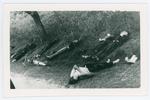 Eccidio di Castello di Godego (Treviso). 29 aprile 1945