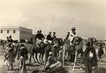 Alcuni viaggiatori durante una escursione in cammello