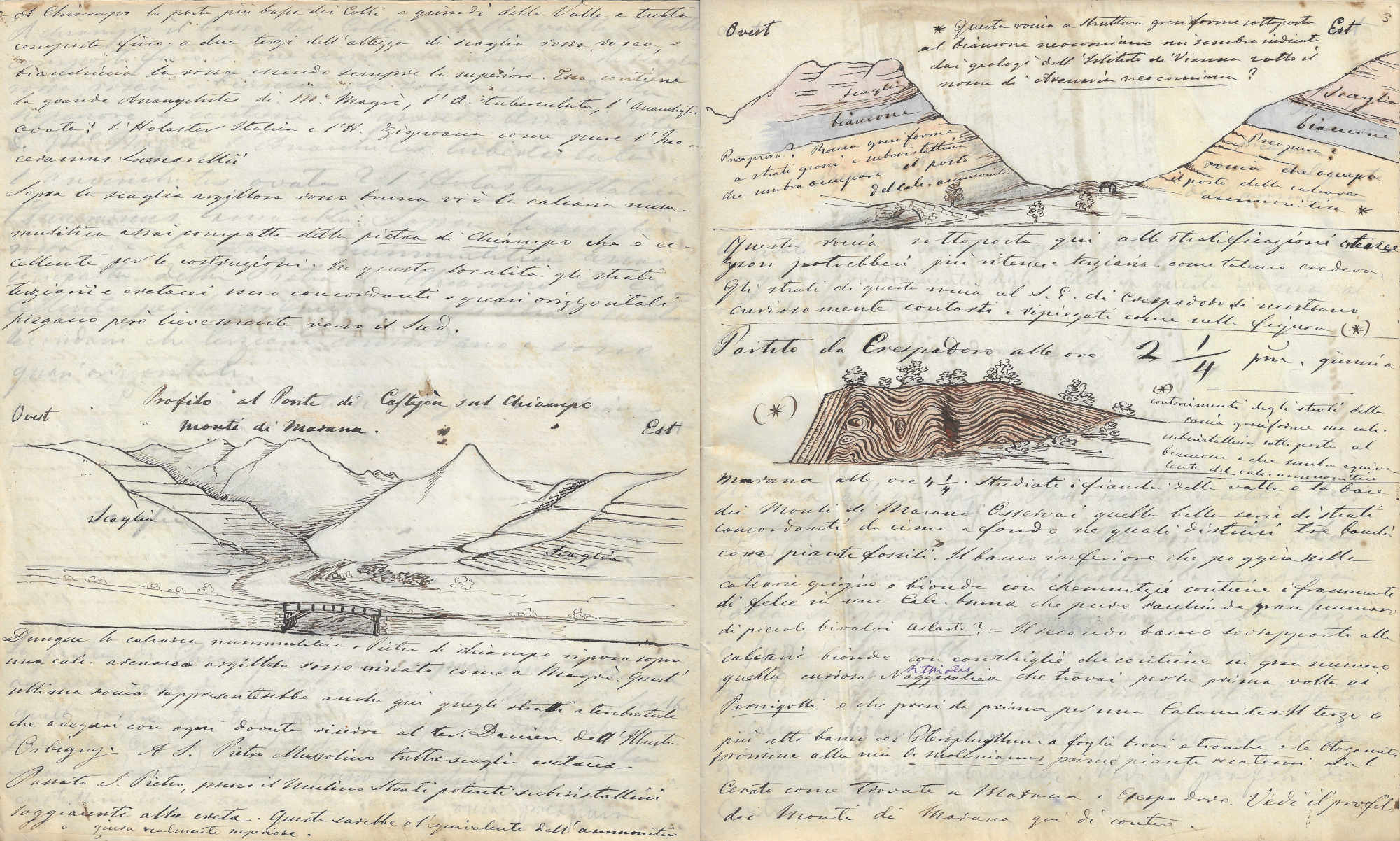 Two pages from Quaderno di campagna C