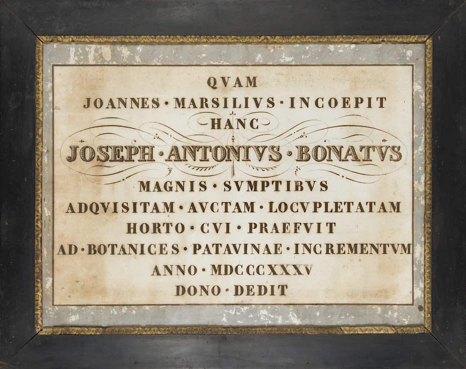 Atto celebrativo della donazione di Bonato, conservata presso la Biblioteca dell'Orto Botanico