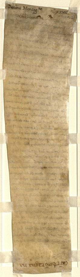 1213 luglio 13, Montagnana, sub capella Sanctae Mariae - Verso
