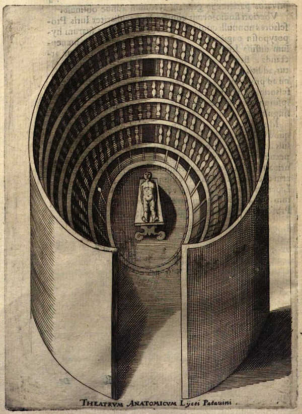 The anatomical theatre of Padova in a drawing of 1654